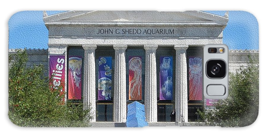 Chicago Galaxy S8 Case featuring the photograph Shedd Aquarium-1 by Kathie Chicoine