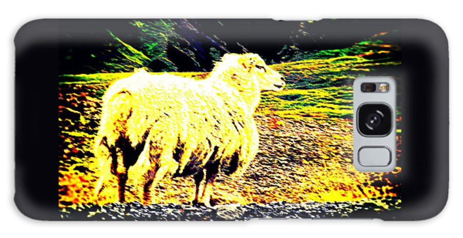 Sheep Galaxy S8 Case featuring the photograph Don't You Look At Me With That Sheep Attitude by Hilde Widerberg