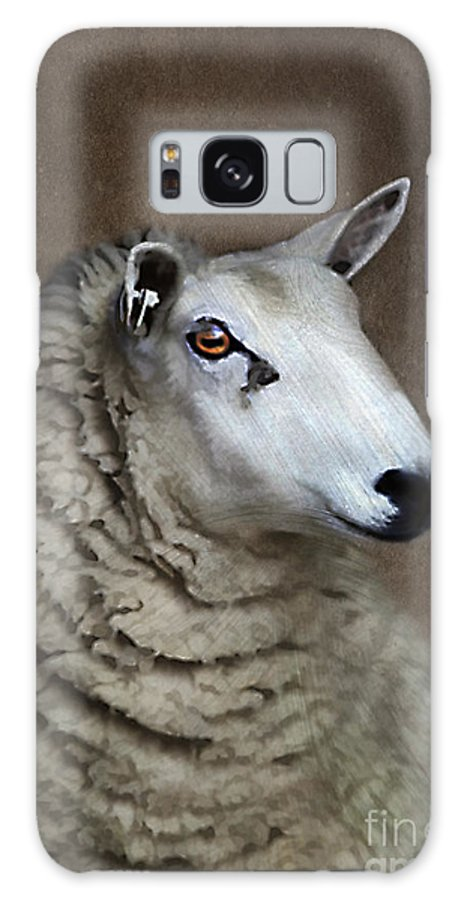 Agriculture Galaxy S8 Case featuring the photograph Sheep by Darren Fisher