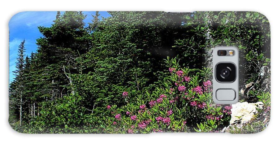 Sheep Laurel Shrub Galaxy S8 Case featuring the photograph Sheep Laurel Shrub by Barbara Griffin