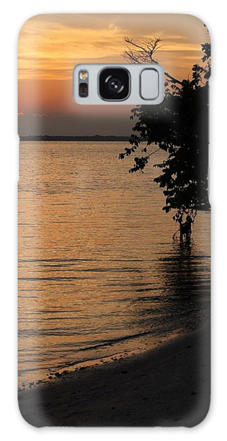 River Galaxy S8 Case featuring the photograph Shore Of The River by Cynthia N Couch