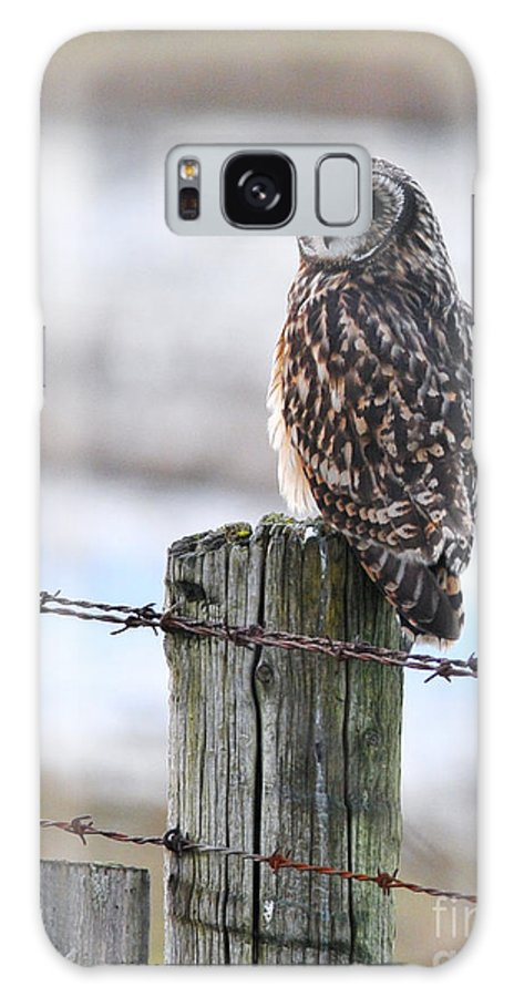 Short-eared Owl Galaxy S8 Case featuring the photograph Short Eared Owl by Sharon Talson