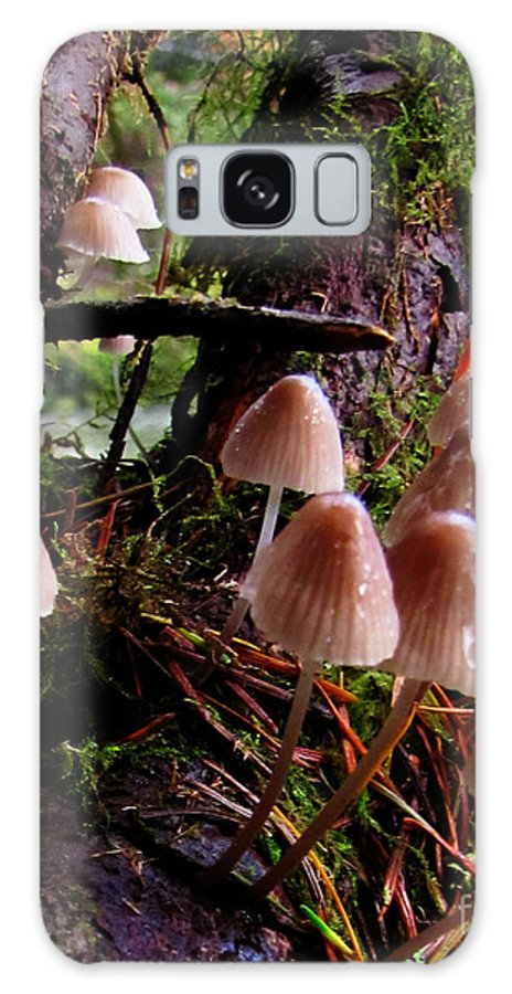 Nature Galaxy S8 Case featuring the photograph Shroomy Shrooms Mushroom Culture by Ron Tackett
