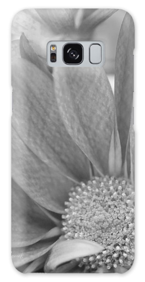 New Growth Galaxy S8 Case featuring the photograph Shy Grey by Robin Lewis