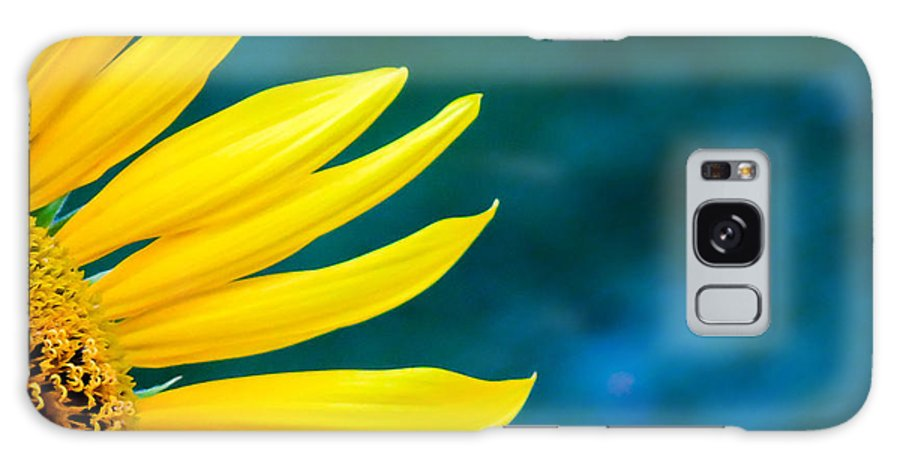 Flowers Galaxy S8 Case featuring the photograph Shy by Shari Brase-Smith