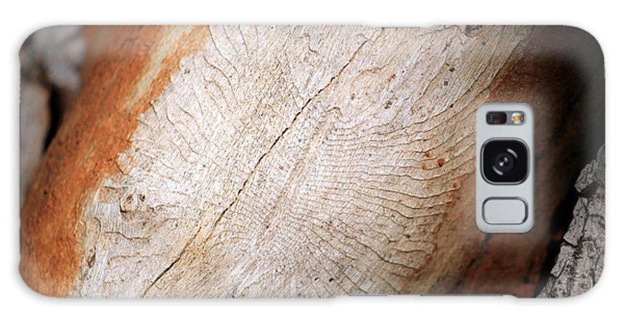 Nature Galaxy S8 Case featuring the photograph Sign In The Wood I by Four Hands Art