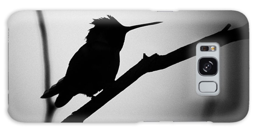 Fine Art Photographers Galaxy S8 Case featuring the photograph Silhouette Humming Bird by Blake Richards