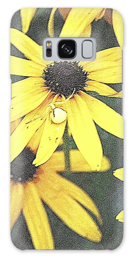 Black Eyed Galaxy S8 Case featuring the digital art Silly Susans Spider by Kathy Sampson