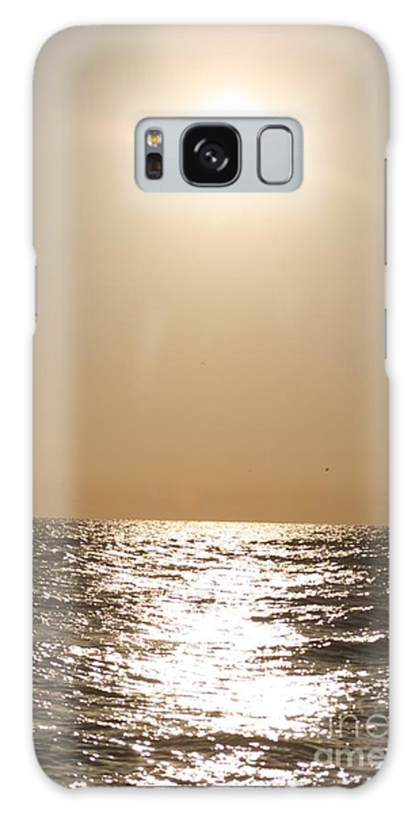 Silver Galaxy S8 Case featuring the photograph Silver And Gold by Nadine Rippelmeyer