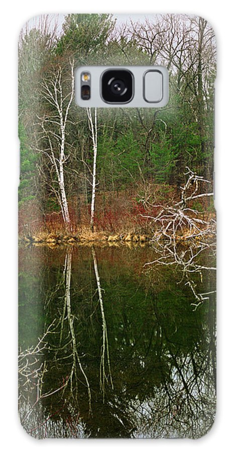 Silver Creek Galaxy S8 Case featuring the photograph Silver Creek by James Rasmusson