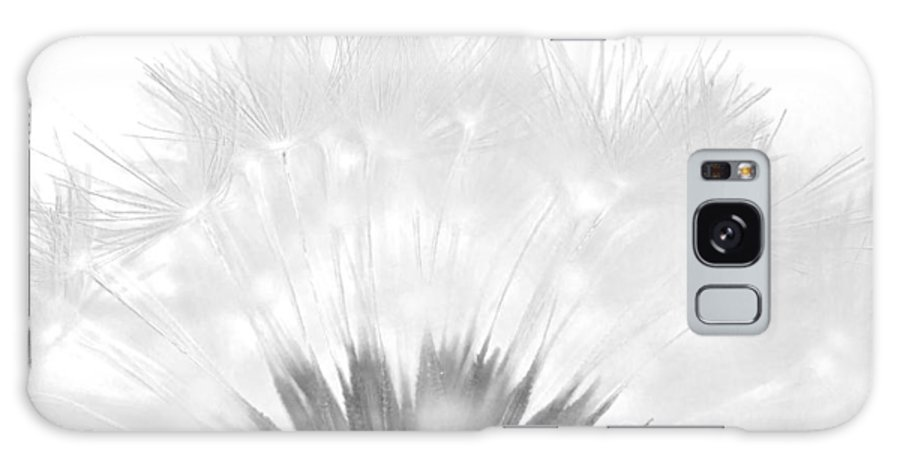 Dandelion Galaxy S8 Case featuring the photograph Simple Beauty by Julie Wynn