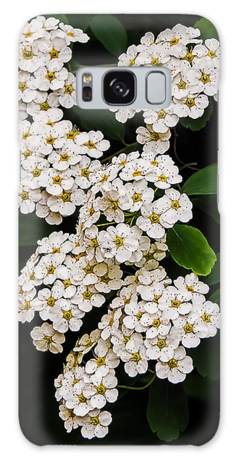Nature Galaxy S8 Case featuring the photograph Simple Beauty by Robert Mitchell