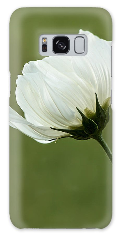 Flower Galaxy S8 Case featuring the photograph Simply Beautiful by Penny Meyers