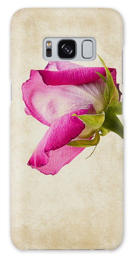 Rose Galaxy S8 Case featuring the photograph Single Pink Rose by Bernice Williams