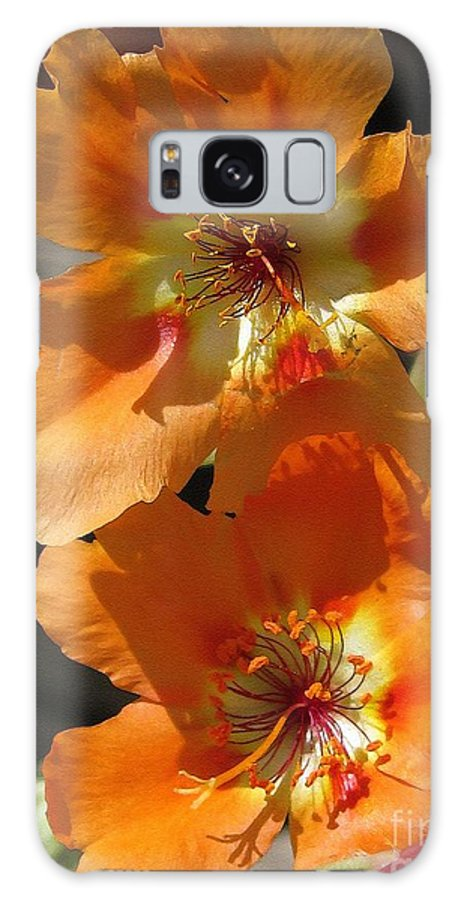Mccombie Galaxy S8 Case featuring the painting Single Portulaca by J McCombie