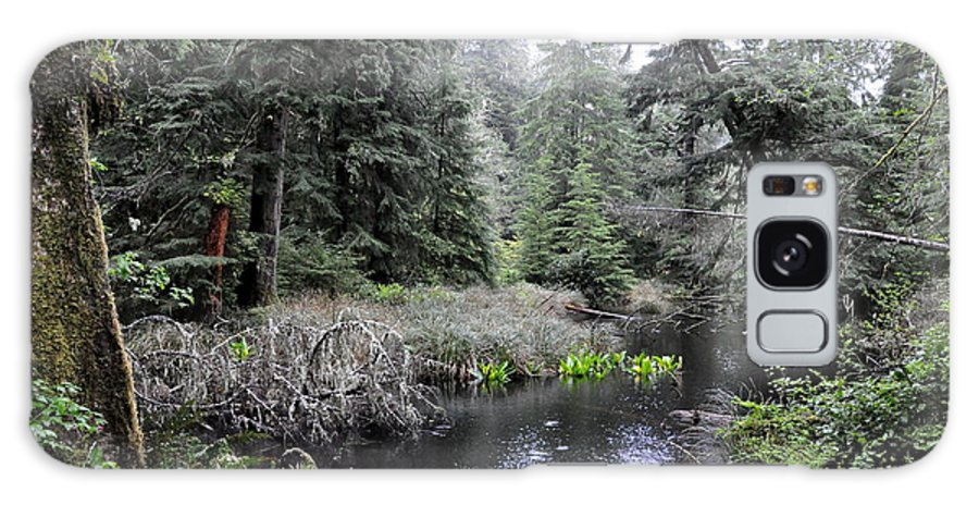 Skunk Cabbage Galaxy S8 Case featuring the photograph Skunk Cabbage Blooming In Washington State Forest 5 by Tanya Searcy