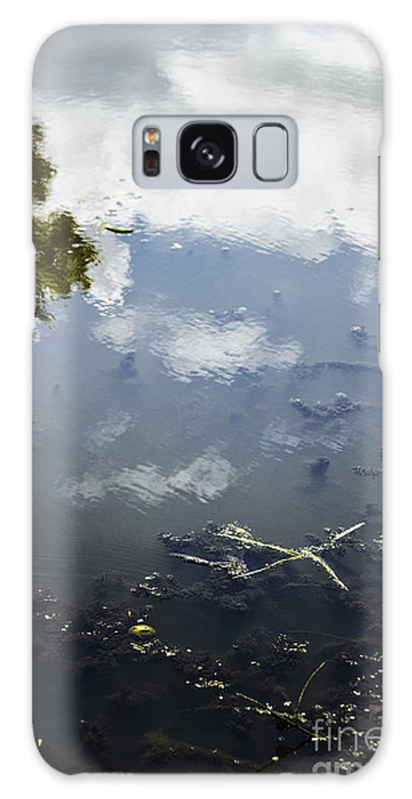 Sky; Water; Reflections; Lake; Pond; Clouds; Cloudy; Trees; Side; Debris; Grasses; Mud; Abstract; View; Lovely; Serene; Pretty; Moss; Algae; Reflecting; Ripples; Shallow Galaxy S8 Case featuring the photograph Sky Reflections by Margie Hurwich