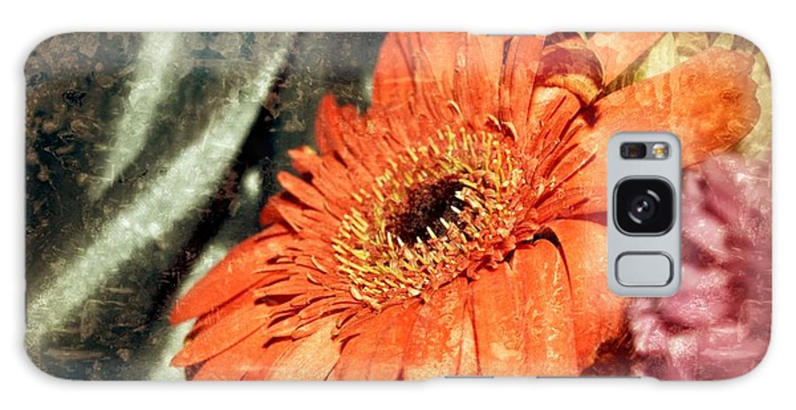 Orange Gerber Galaxy S8 Case featuring the photograph Sleepy Daisy by Sue Small