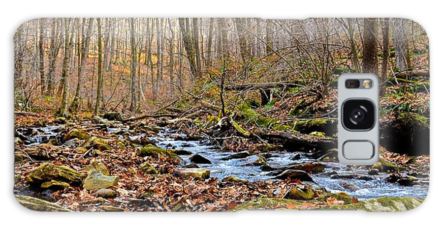 Pennsylvania Galaxy S8 Case featuring the photograph Small Pennsylvania Creek In Autumn by Jake Donaldson