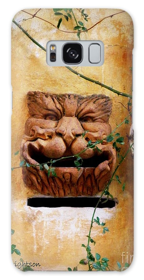 Mail Box Galaxy S8 Case featuring the photograph Smiling Cat Mail Box by Lainie Wrightson
