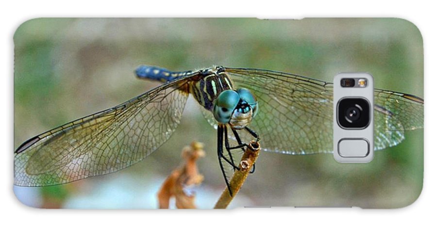 Macro Photo Galaxy S8 Case featuring the photograph Smiling Dragon Fly by Peggy Franz