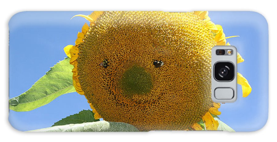 Sunflower Galaxy S8 Case featuring the photograph Smiling Sunflower by Heather Bach