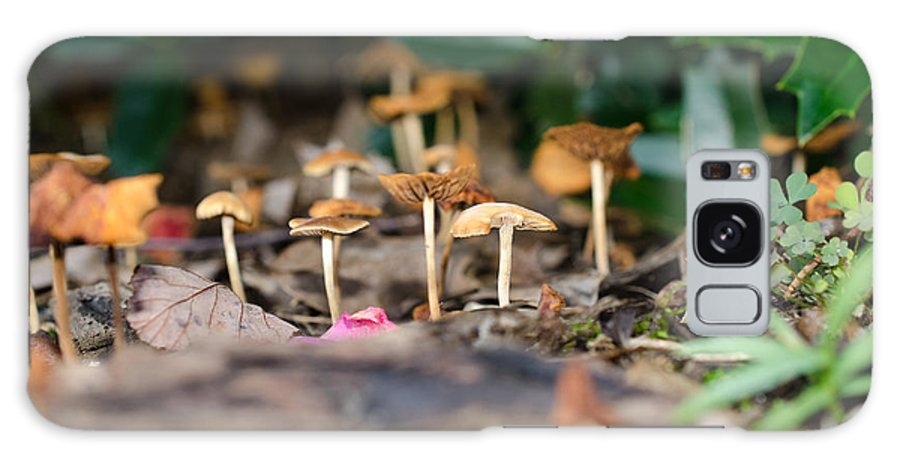 Mushroom Galaxy S8 Case featuring the photograph Smurf Village Scene 2 by Roberts