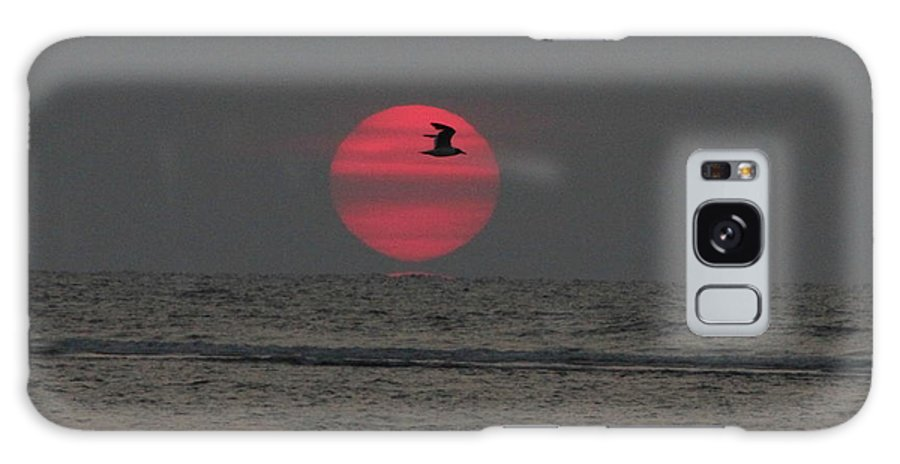 Birds Galaxy S8 Case featuring the photograph Snap At Sea Island by Reid Callaway