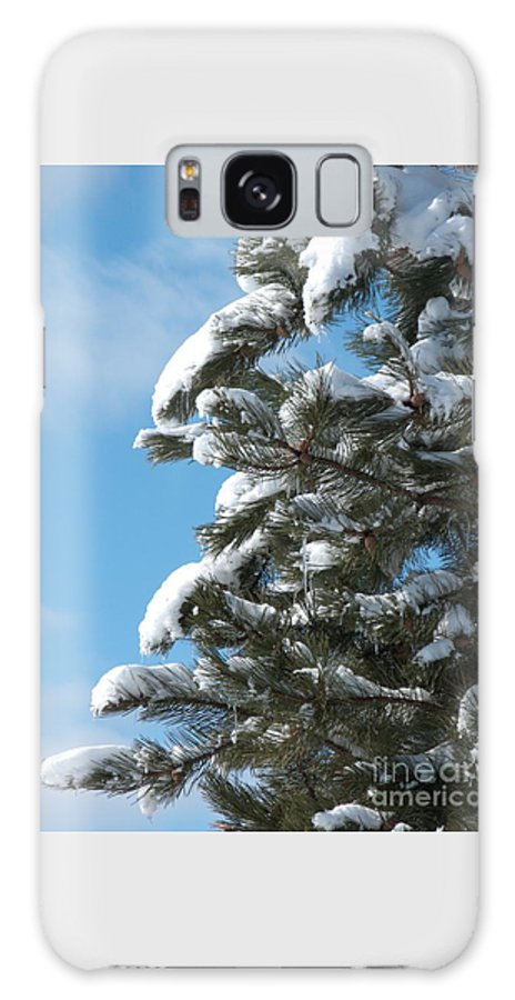 Snow Galaxy S8 Case featuring the photograph Snow-clad Pine by Ann Horn