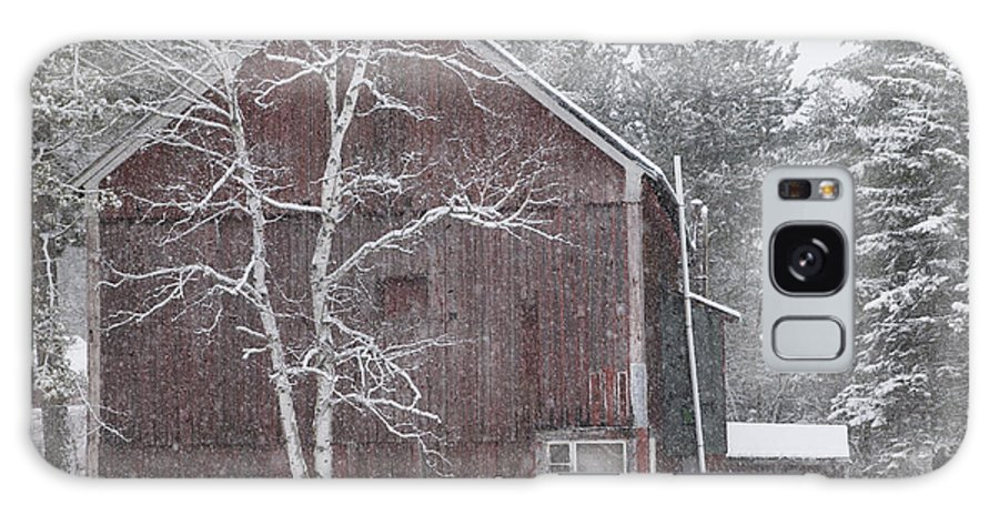 New England Galaxy S8 Case featuring the photograph Snow Covered Birch Tree And A Red Barn. by Don Landwehrle