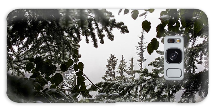 Snow Galaxy S8 Case featuring the photograph Snow In Trees At Narada Falls II by Greg Reed