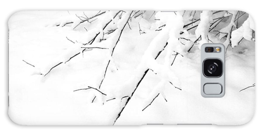 Snow; Winter; Branch; Black-and-white; Square; White Galaxy S8 Case featuring the photograph Snow On Branch by Lonnie Paulson