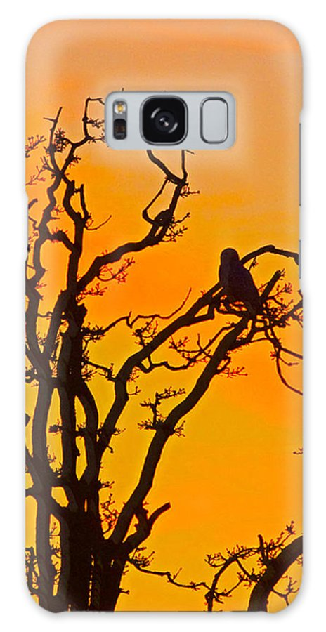 Snow Owl Galaxy S8 Case featuring the photograph Snow Owl Silhouette by Rob Mclean
