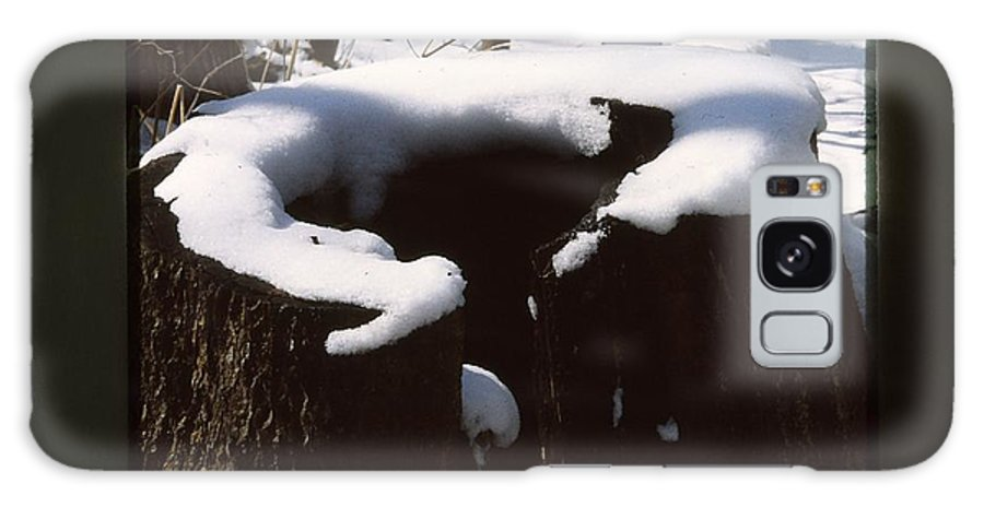 Winter Snow Nature Log Galaxy S8 Case featuring the photograph Snow Topping Log by Joel Finer