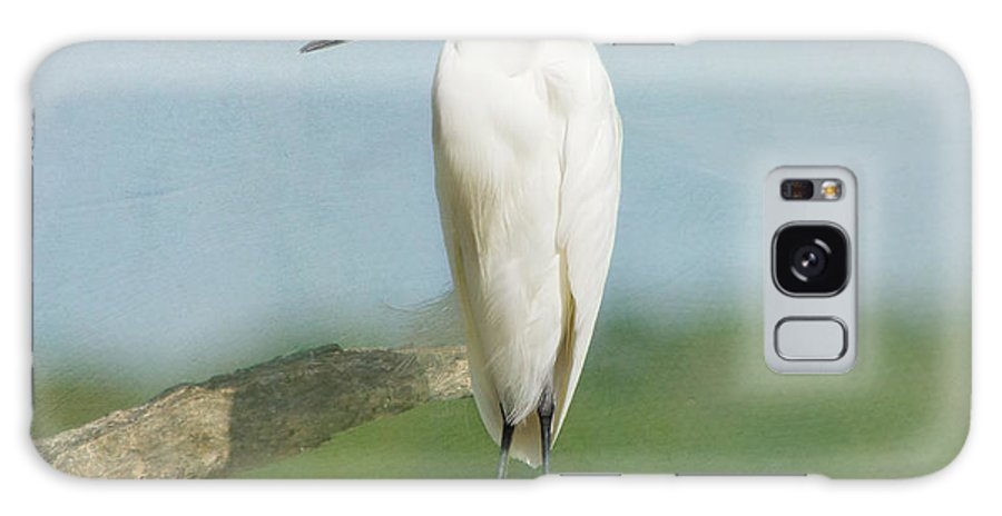 Egret Galaxy S8 Case featuring the photograph Snowy Egret by Kim Hojnacki