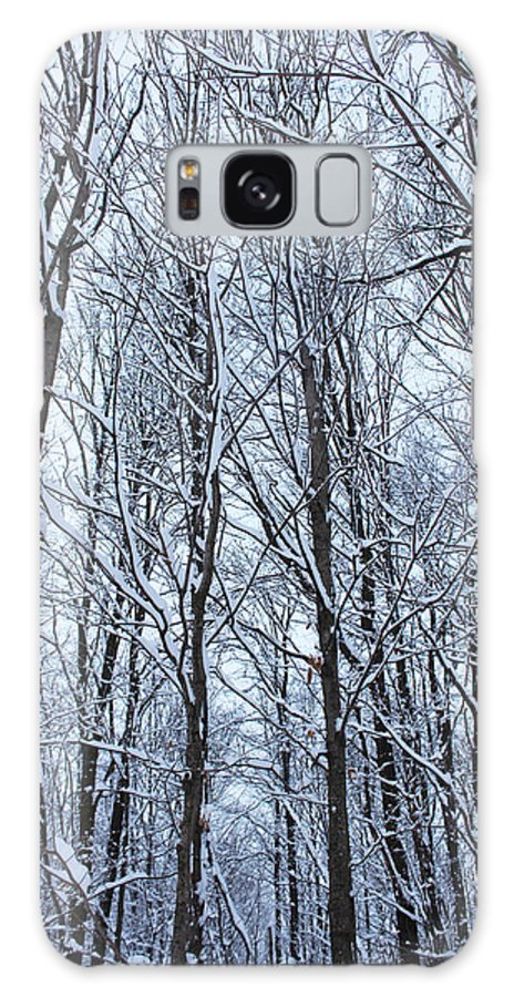 Winter Galaxy S8 Case featuring the photograph Snowy Forest by Tiffany Erdman