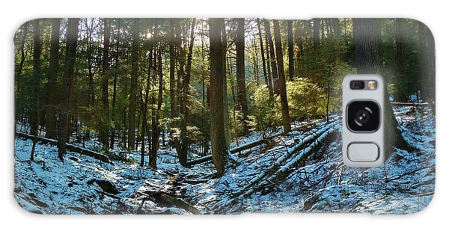 Snow Cook Forest Galaxy S8 Case featuring the photograph Snowy Valley by Anthony Thomas
