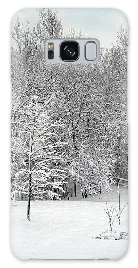 Winter Galaxy S8 Case featuring the photograph Snowy Woodland by Karen Adams