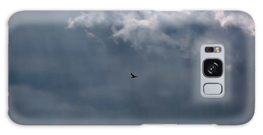 Soaring Gull.bird Flying In A Cloudy Sky Galaxy S8 Case featuring the photograph Soaring Gull - Bird Flying In A Cloudy Sky by Leif Sohlman