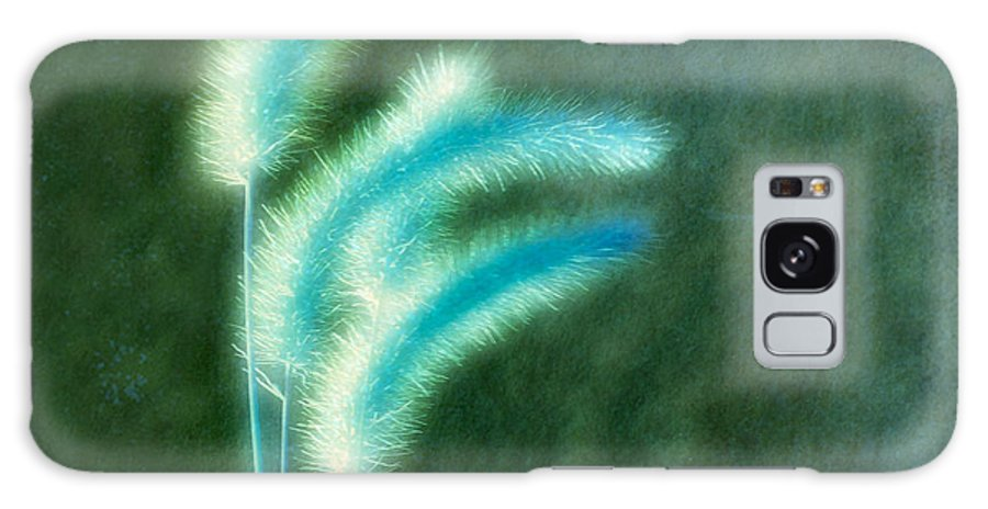 Grass Galaxy S8 Case featuring the photograph Soft Blue Grass by Gothicrow Images