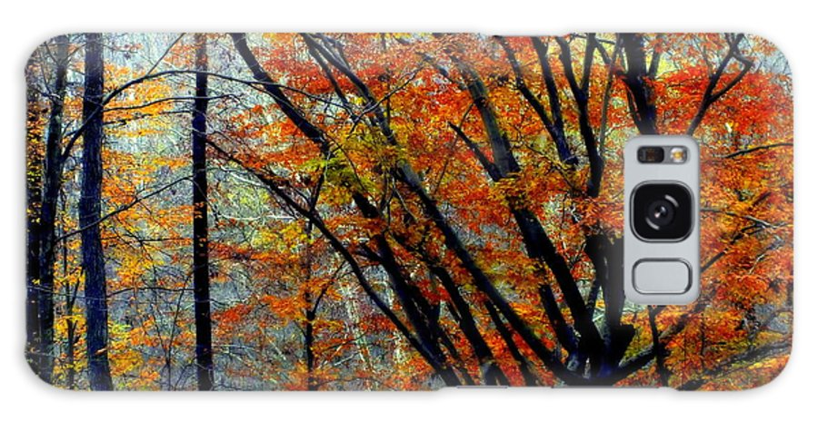 Autumn Galaxy S8 Case featuring the photograph Song Of Autumn by Karen Wiles
