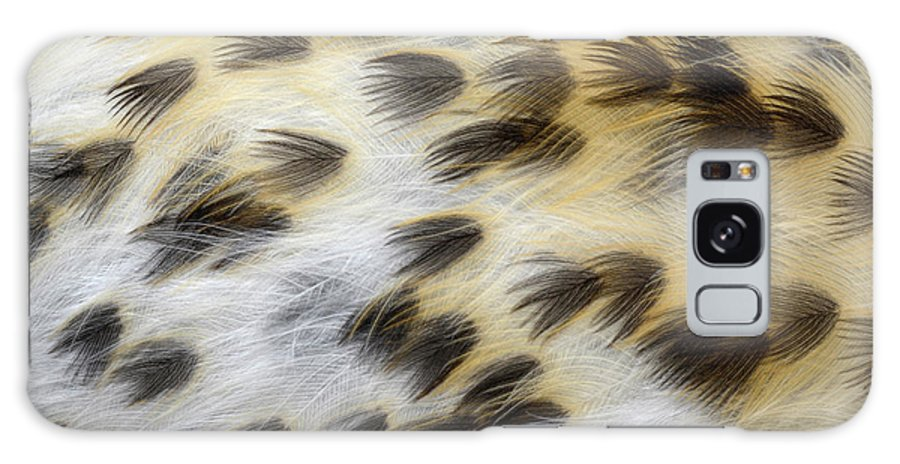 Animal Galaxy S8 Case featuring the photograph Song Thrush Breast Feathers by Nigel Downer/science Photo Library