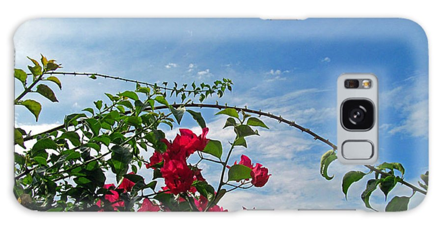 Flowers Galaxy S8 Case featuring the photograph Spanish Bougainvillea by Tina M Wenger