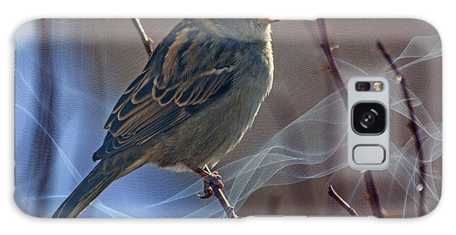 Sparrow Galaxy S8 Case featuring the photograph Sparrow In A Weave by Janice Pariza