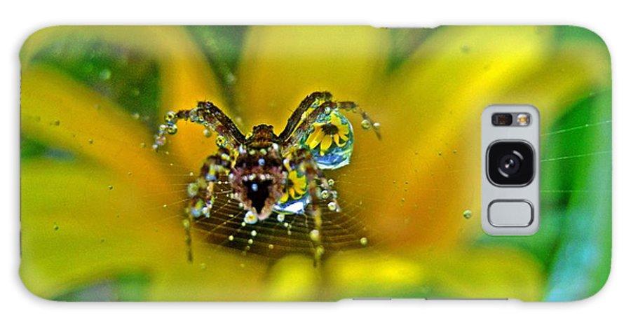 Spider Galaxy S8 Case featuring the photograph Spider Dew Flower Reflect by Scotty Alston