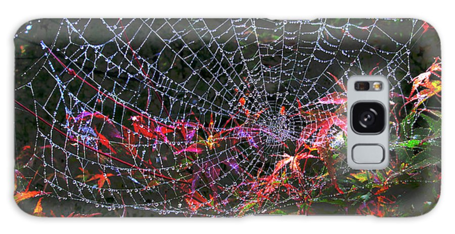 Photograph Galaxy S8 Case featuring the photograph Spider Web by Kathy Moll