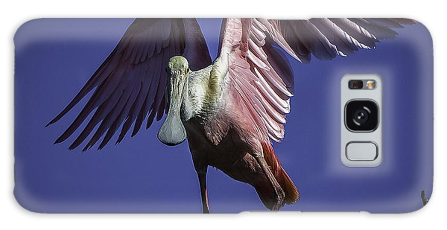 Rookery Galaxy S8 Case featuring the photograph Spoonbill Balancing Act by Donald Brown