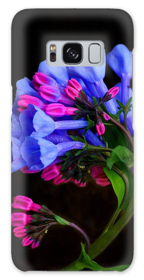 Flower Galaxy S8 Case featuring the photograph Spring Bluebells by John Absher