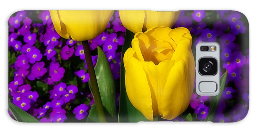 Spring Galaxy S8 Case featuring the photograph Spring Colours by Susie Peek