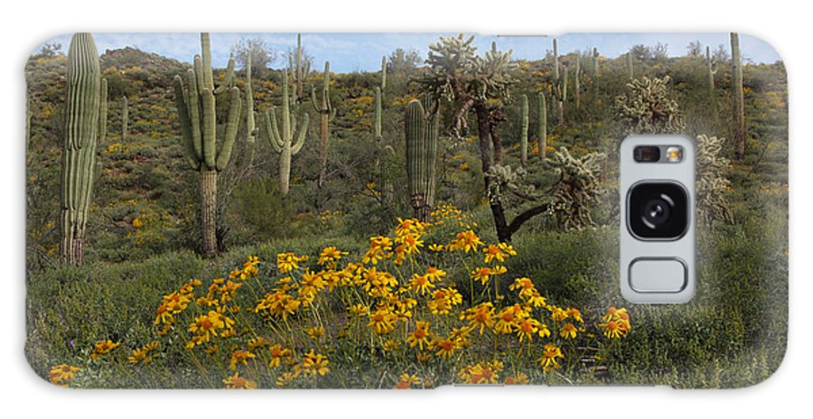 Arizona Galaxy S8 Case featuring the photograph Spring In The Superstition Wilderness by Susan Rovira